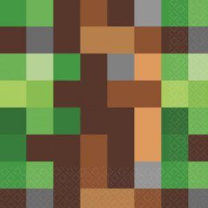 Servetter Minecraft